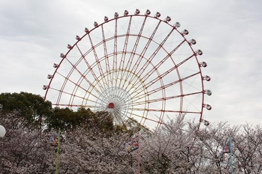 201303kumamoto1.jpg