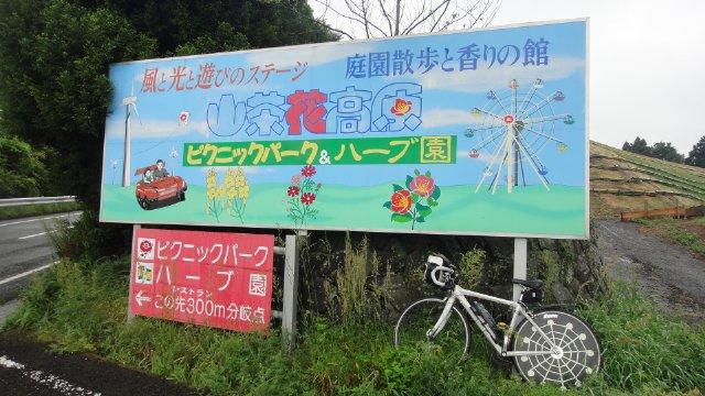 imaizumi_k22.jpg